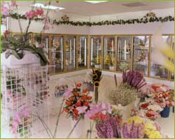 Glass Doors for Floral Display Coolers, Walk-in Coolers